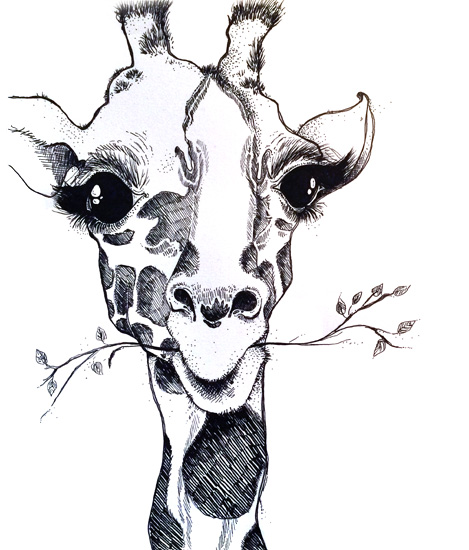 Giraffe - Pen and ink