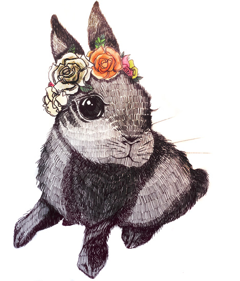 Rabbit - Pen and ink