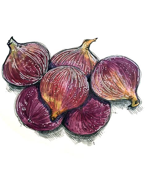 Figs - Acrylics